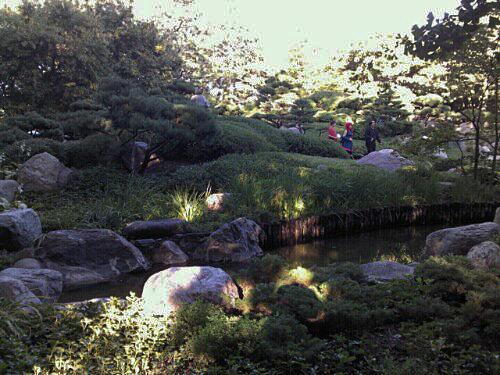 Japanese garden - pond